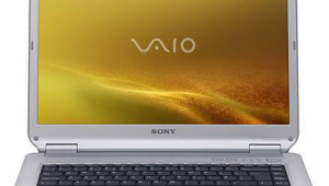 Sony Vaio VGN-NS31EH/S